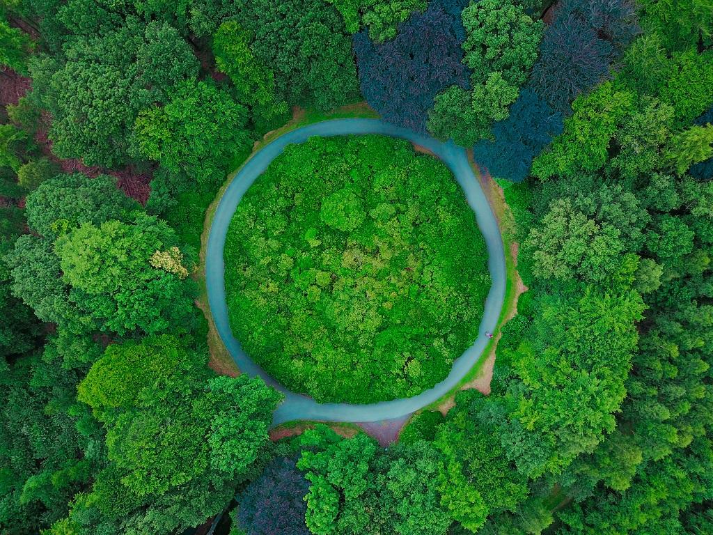 Desarrollo de productos sostenibles pensando en su ciclo de vida completo